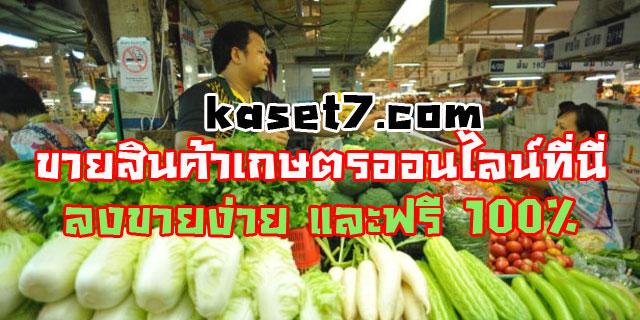 ขายสินค้าเกษตรออนไลน์ ที่นี่ ฟรี ลงประกาศ